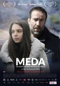 Film-Meda or The Not so Bright Side of Things (2017)