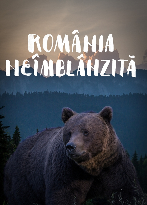 Untamed Romania (2018) - Photo
