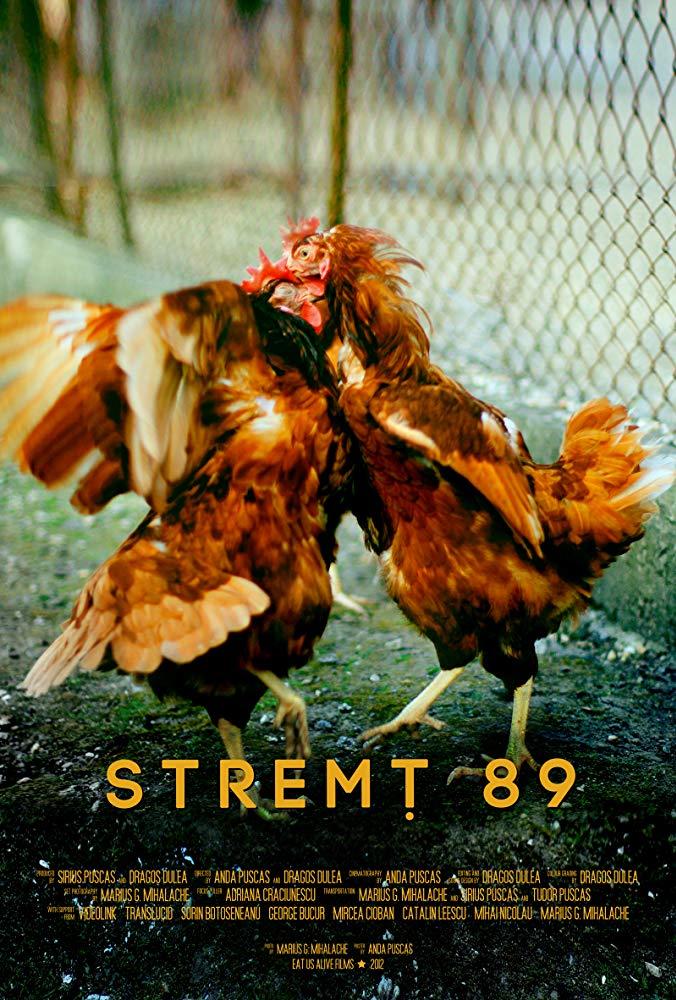 Stremț 89 (2012) - Photo