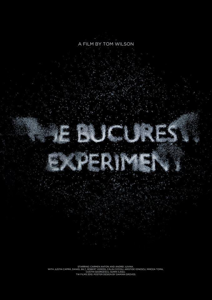 Experimentul Bucureşti (2013) - Photo
