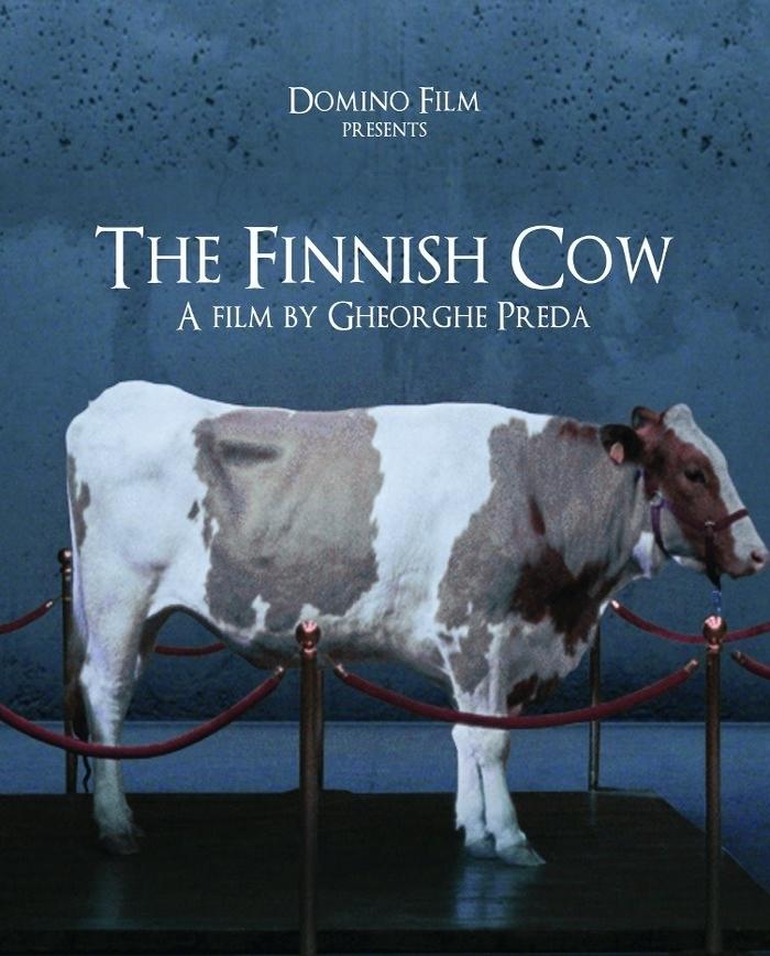 Vaca finlandeză (2012) - Photo