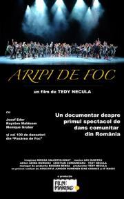 Aripi de foc (2010) - Photo
